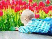 Barnet i tulpan fält — Stockfoto