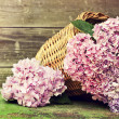 Wicker basket with pink flowers — Stock Photo