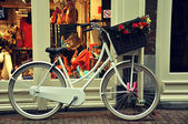 White bicycle with wicker basket — Stok fotoğraf