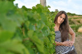 Beautiful woman looks in the vineyard — ストック写真