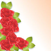 Red rose background — Stock Vector