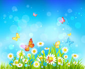 Sunny day background with flowers and butterflies — Stock Vector
