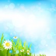 Summer background with flowers and grass — Stock Vector