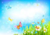 Summer sunny background — Stock Vector