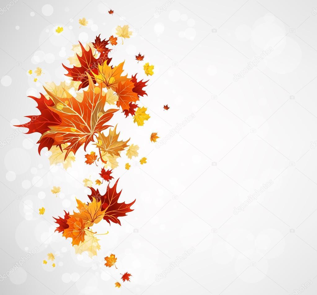 与秋天的枫叶树叶背景— 矢量图片作者 paprika