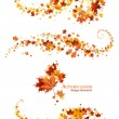 Autumn leaves design elements — Stock Vector