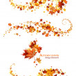 Autumn leaves design elements — Stockvectorbeeld