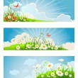 Summer floral banners — Stock Vector