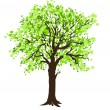 Tree — Stockvector #32842763