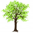 Stock Vector: Tree