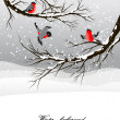 Stock Vector: Winter background with bullfinch