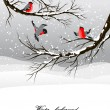 Winter background with bullfinch — ストックベクター #33082279
