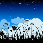 Summer night background — Stock Vector
