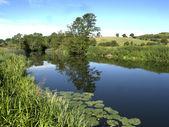 River Avon — Stock Photo