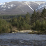 River running into Loch Morlich, Avimore — Stock Photo #31673323