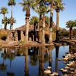 Papago Ponds — Stock Photo