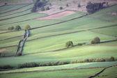 North York Moors National Park — Stock Photo