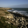 Stock Photo: Portland Bill