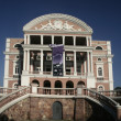 The Manaus Opera House — ストック写真