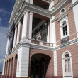 The Manaus Opera House — Stock fotografie