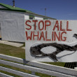 Stock Photo: Whaling sign,