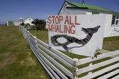 Whaling sign, — Stock Photo