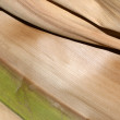 Stock Photo: Abstract Palm Frond Wood Texture