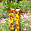 Pair of Rubber Boots — Stock Photo