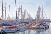 View of Yachts Moored in Durban Harbor South Africa — Stock Photo