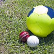 Football Cricket And Hockey Balls On Green Grassy Field — стоковое фото #34826761