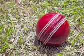 Bright Red Cricket Ball On Patchy Grass Lawn — Stock Photo