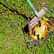 Hand Made African Leaf Rake and Leaves on Grass — Stock Photo