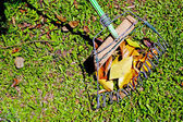 Hand Made African Leaf Rake and Leaves on Grass — Foto Stock