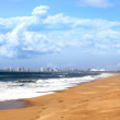 View of Durban City Skyline and Beach Foreground — Stock Photo