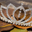 Diamond Tiara On A Bed Of Brown Autumn Leaves — Stock Photo