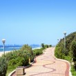 Winding Pedestrian Walkway With Beach And Ocean Backdrop — Stock Photo #36374295