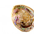 Abalone Half-Shell With Mother-Of-Pearl Lining — Stock Photo