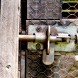 Stock Photo: Metal Bolt On Wire Mesh Door Of Bird Aviary