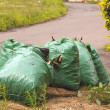Gargbage Bags Waiting for Collectionon Side of Road — Stock Photo