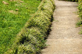 Concrete Garden Path Borderd by Plants and Lawn — Stock Photo