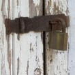 Stock Photo: Peeling Wooden Door Secured By Padlock Hasp And Staple