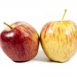 Red And Yellow Apples On White Background — Stock Photo