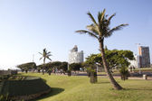 Trees Lining Durban's Golden Mile on Beachfront — Stok fotoğraf