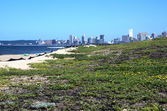 Sand Dunes on beach against City Skyline — Photo