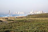 Landscape of Dune Rehabilitation Taking Place at  Beachfront — Stock Photo