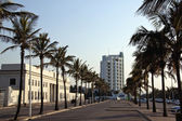 Palm Trees Line Marine Parade Outside Natal Command Headquarters — Stock Photo