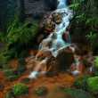 Cascades in rapid stream of mineral water. Red ferric sediments on big boulders between green ferns. — Stock Photo