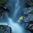 Thin twig from aspen tree on basalt boulder in blurred mountain rapid stream. Blue blurred waves, milky smoky water with reflections. — Stock Photo