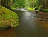 Big mossy sandstone boulders in water of mountain river. Clear blurred water with reflections. Gulch covered beeches and maple trees with first colorful leaves, rain drops on light green fern. — Stock Photo