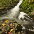 Small waterfall full of water after rain. Colorful leaves from maple tree and wild cherry laying on wet basalt rock. Stones and colorful autumn leaves — Stock Photo #32024725